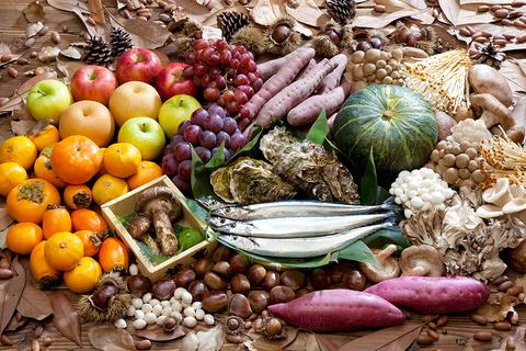 秋の野菜.jpg